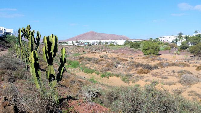 Wulkaniczna Lanzarote